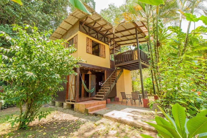 Jungle house for families groups houses for rent in for Jungle house costa rica
