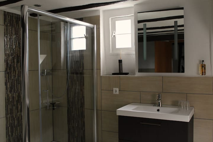Apartment Riesling Large En Suite Shower Room with a Double Shower Enclosure, Washbasin and WC