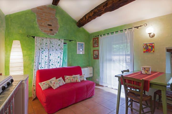 Langhe, cosy apartment in the hills near Dogliani - Belvedere Langhe - Casa