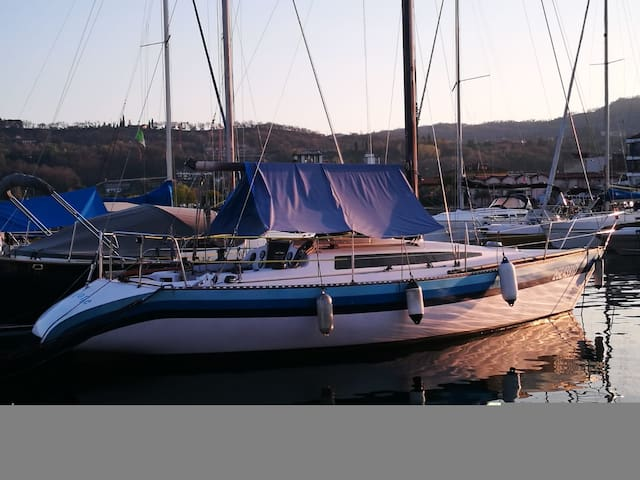 Airone boat
