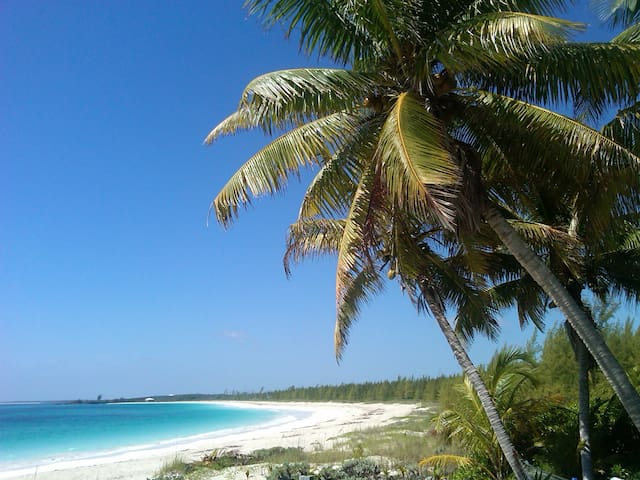 BEACH HAVEN, Bahama Palm Shores, Abaco, Bahamas