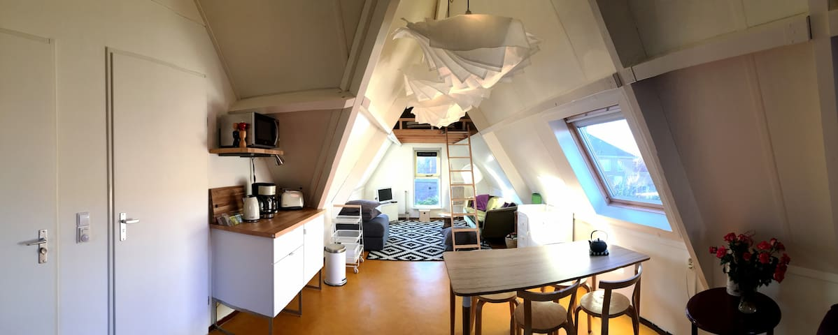 Cosy guest studio, quiet neighbourhood near nature - Groningen - บ้าน