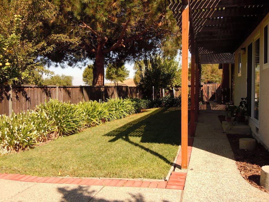 Private shaded backyard