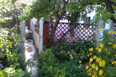 Casa do Jardim - Figueira da Foz