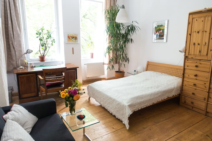 Spacy room in a art nouveau house - Nuremberg - Apartment