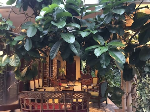Sethana house Green and serene