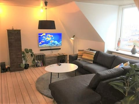 Stor hyggelig lejlighed i Aalborg Vest