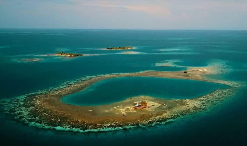 Bird Island : a unique private Island in Belize.