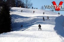 Winterplace.com.  30 minutes from bottom of mountain.