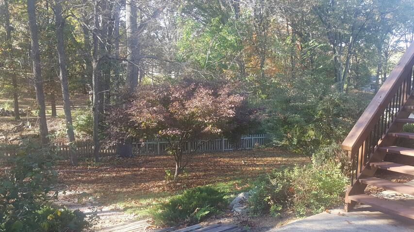 Cozy, Beautiful Suburban home on wooded lot