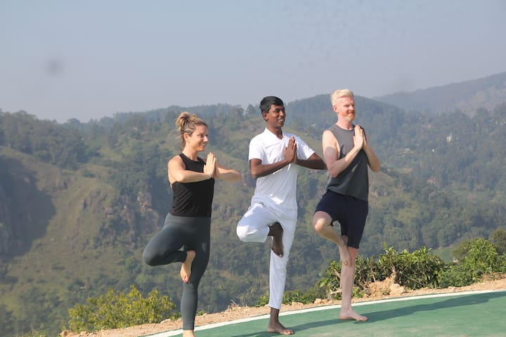 Sri Lankan yoga and Accommodation in Hostel.