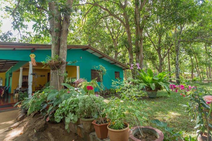 Bhagya's Home - Sigiriya - Hus