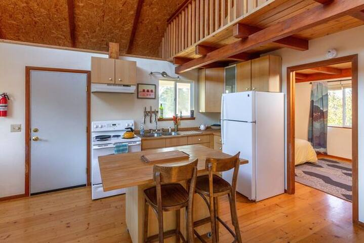 Kitchen with Full Sized Fridge and Electric Stove