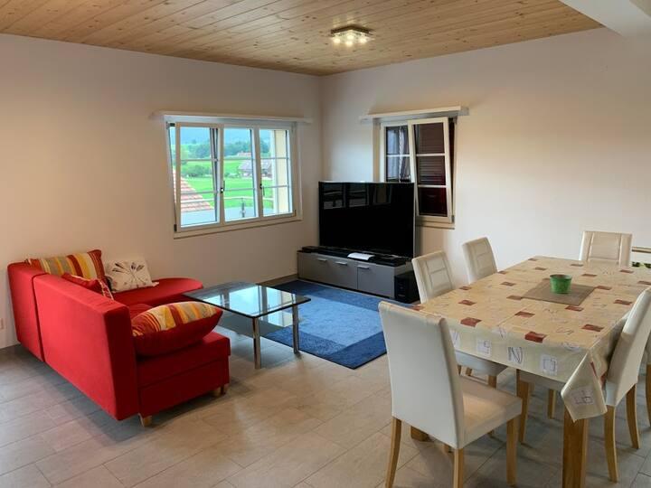 Grosse, sonnige Wohnung in Forst-Längenbühl