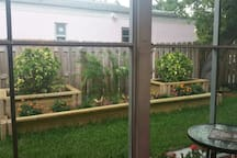View from screened in patio deck