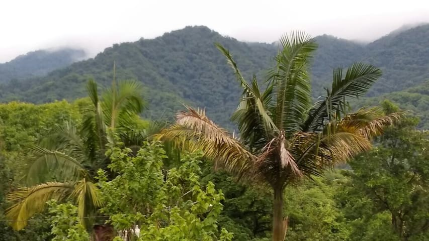 Atalaya Selva Yungas