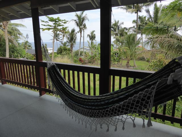 Picture yourself relaxing in this hammock listening to the birds and the surf.
