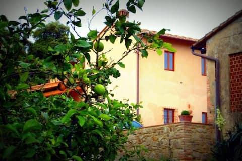 """Appartamento """"Colonica"""" vicino a Firenze"""