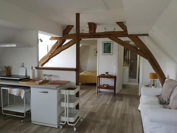 Studio cosy proche du Château de Chenonceau