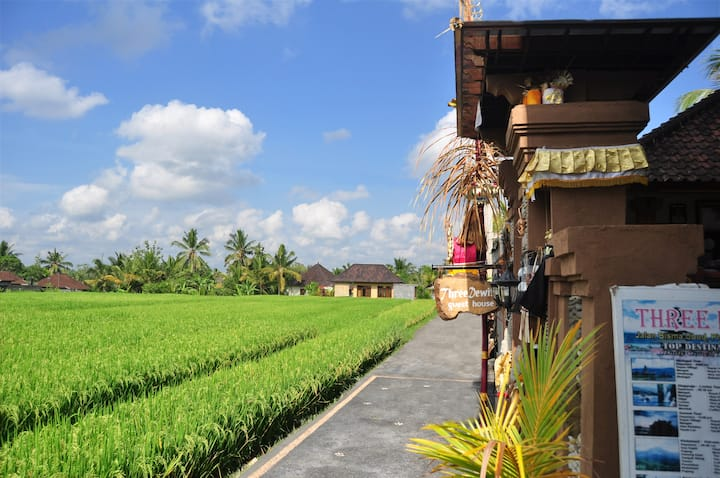 THREE DEWI'S STANDAR ROOM WITH RICE FIELD VIEW
