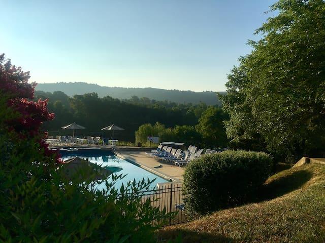 Luxury with a View - Charlottesville - Appartement