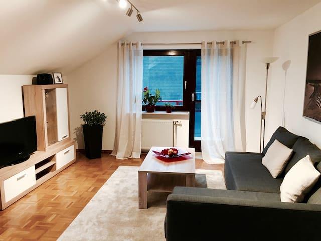 Großzügige, gemütliche Wohnung in Weinsberg - Weinsberg - Apartamento