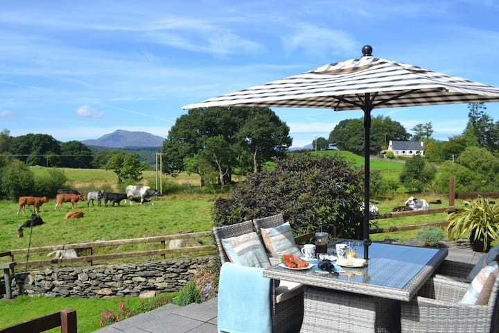 Tryfan Cottage 2 En-suite BETWS-Y-COED Conwy Wales