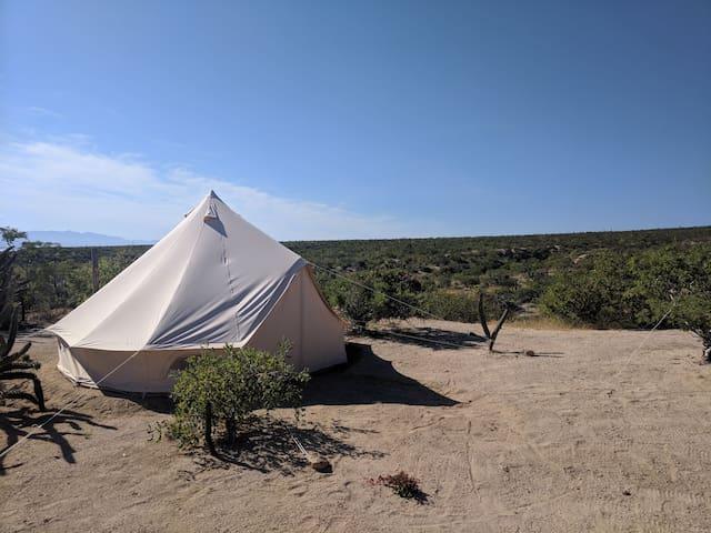 Punta Gorda Glamping Tent