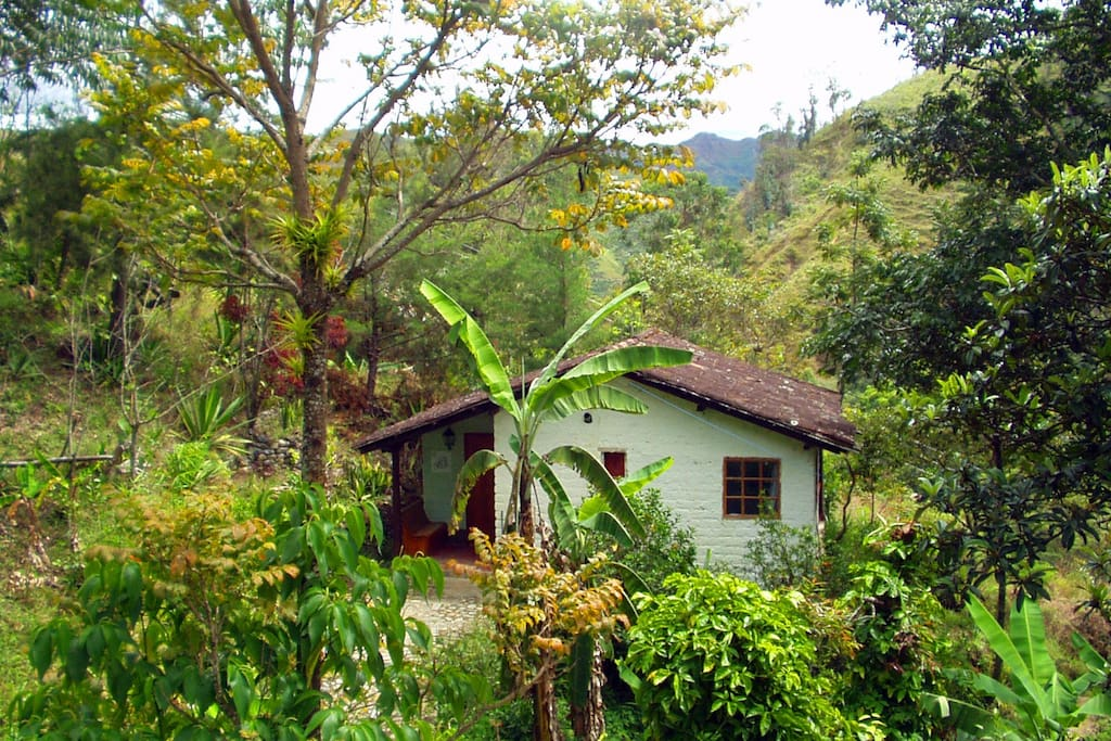 The Hummingbird Suite - Cabañas Río Yambala - Vilcabamba