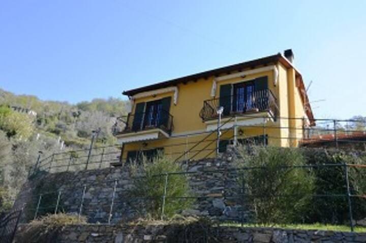 Villa Grazia cod. CITRA 010002-LT-0010