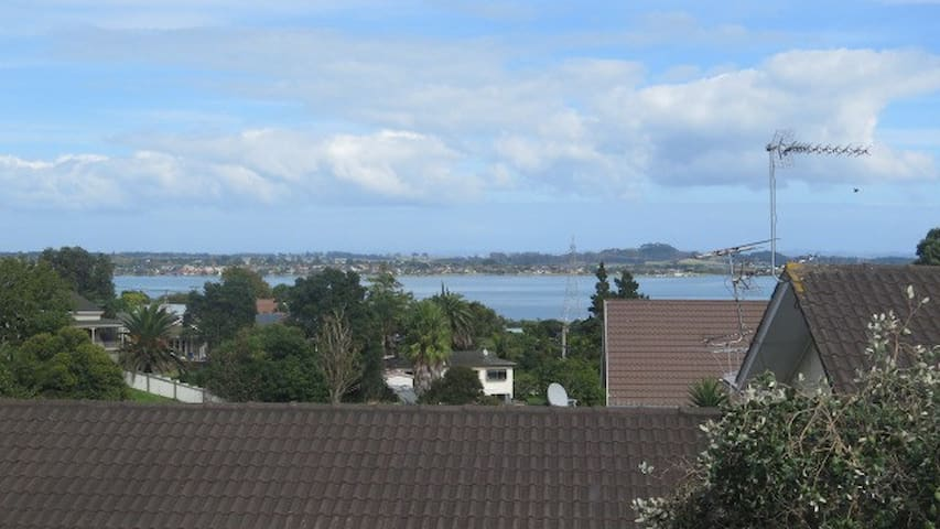 Sunny tidy unit in Onehunga! - Auckland - Apartment