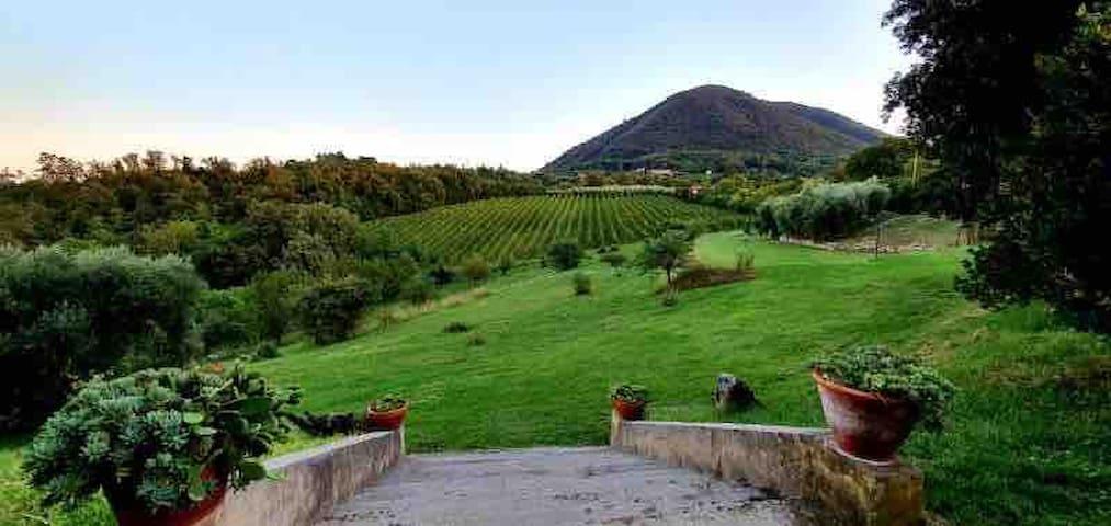 Villa Marani-fantastic villa on the Euganean hills