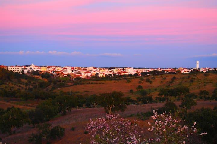 Algarve  Natural / Algarve Nature