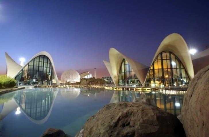 Best location,Best host! Oceanografic,City of Arts