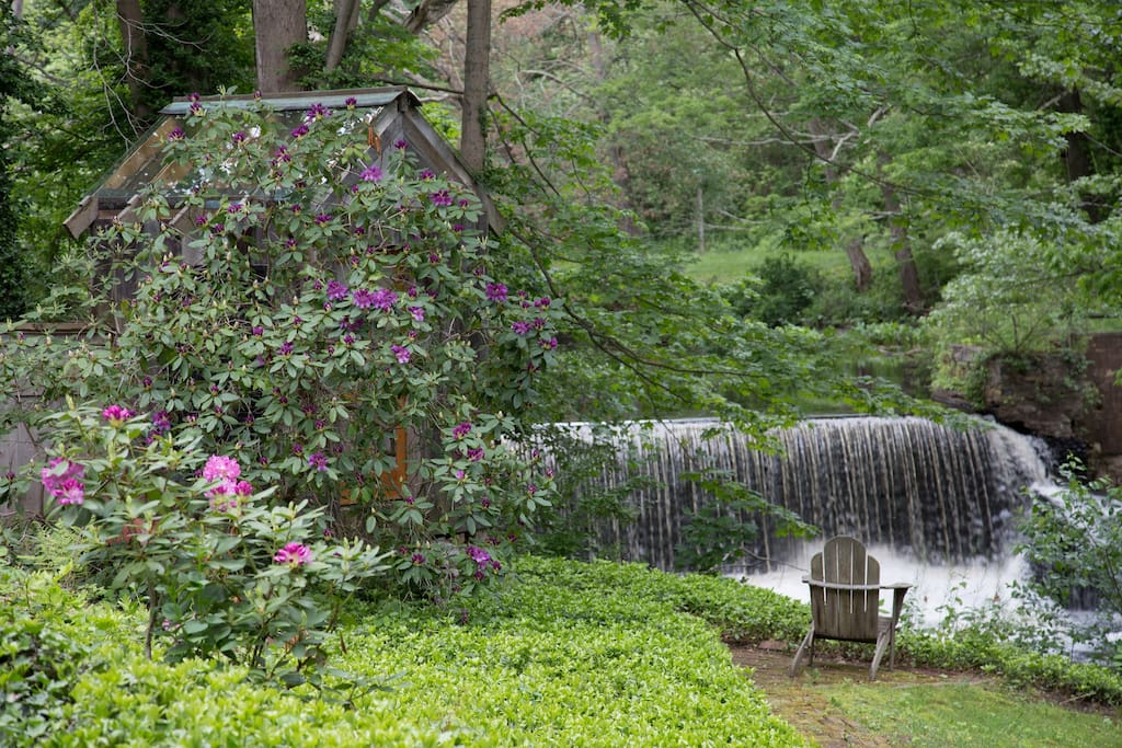 A few steps away in the backyard you will find a waterfall surrounded by lush greenery and gardens.