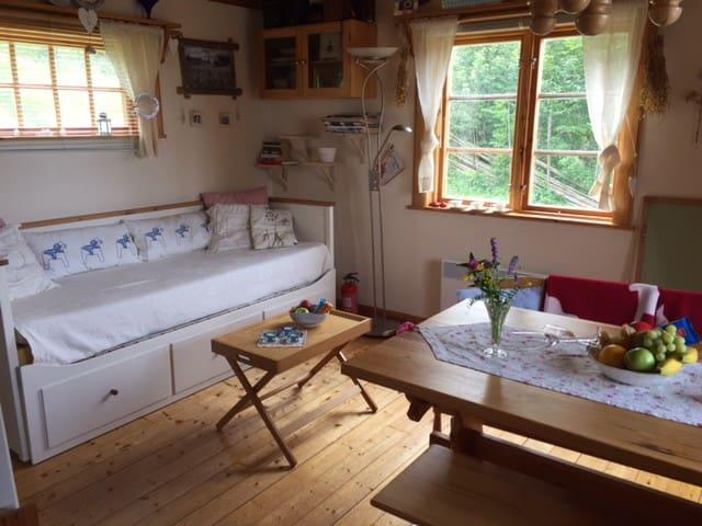 "The ""big"" room with the bed, kitchen and kitchen table. Stora rummet med bäddsoffa, kök, matbord"