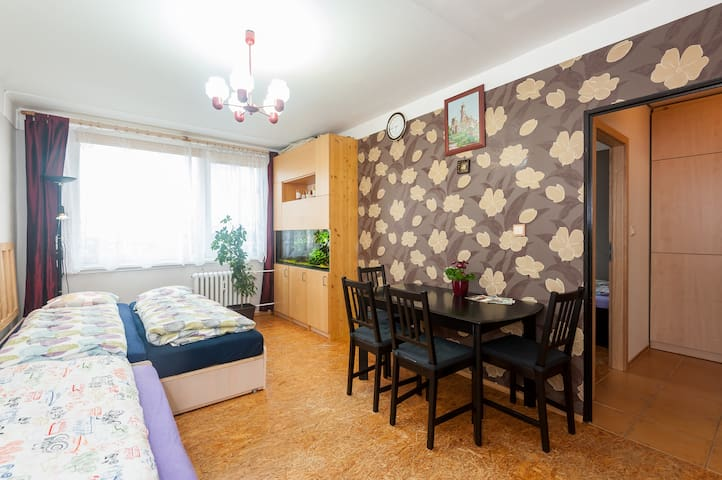 The flat on the 12th floor, near the airport. - Prague - Apartment