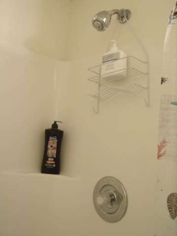 Shower with supplies