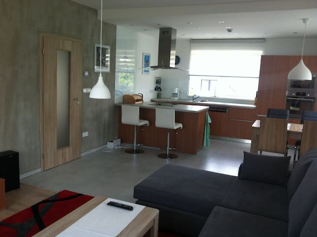 Luxury, quiet apartment 72 mq, safety parking. - Prague - Flat