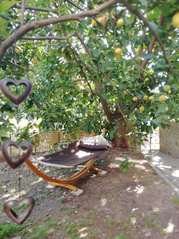 To relax in the garden