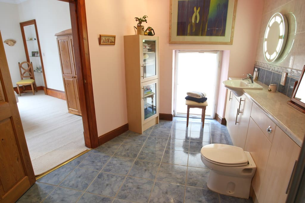Large private bathroom leading into bedroom