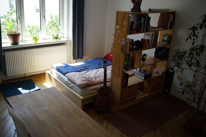 big, beautiful and clean room near city center