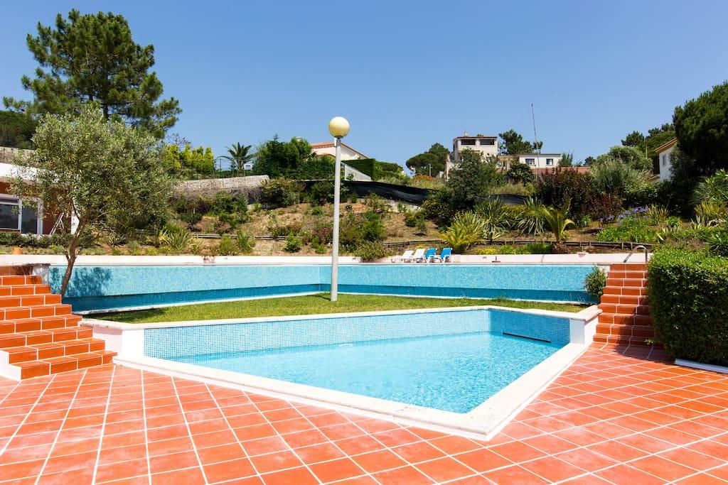 Swimming pool of the resort.