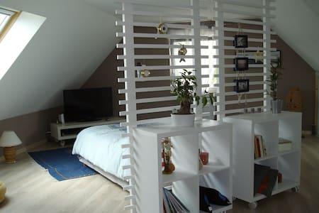 Chambre spacieuse et confortable - SDB privative - Filain