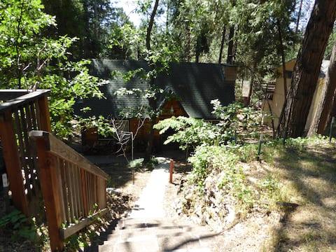 Cute & Cozy Mountain Cabin