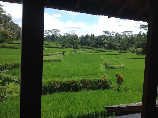 Vegetarian little wood home in Ubud - Ubud - Huis