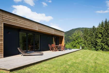 Maison contemporaine a la montagne - Le Ménil