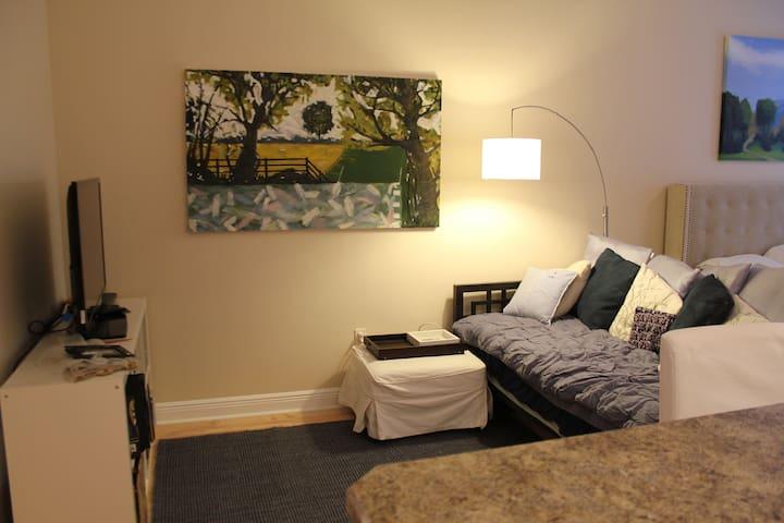 Cozy Studio - Orlando - Apartment