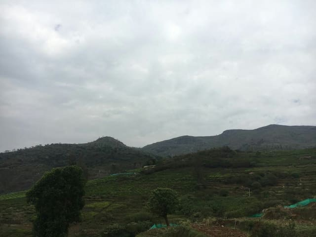 Its a valley view property - Nilgiris - House