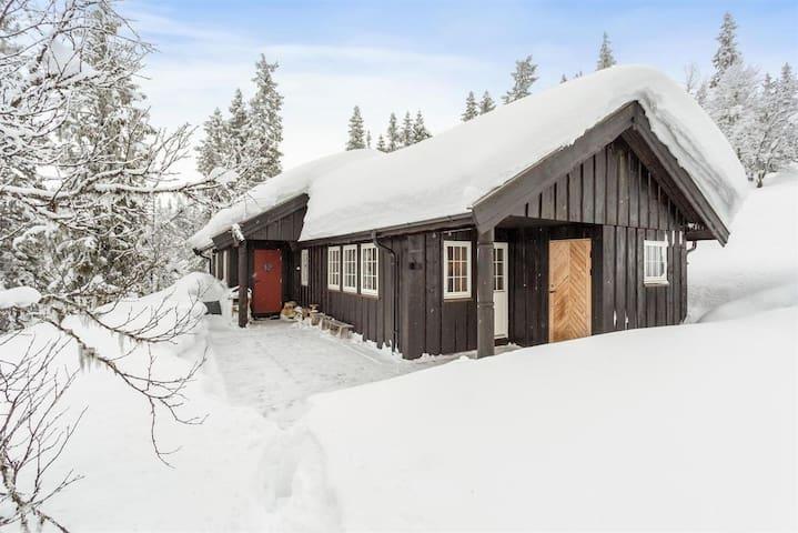 Mimihytta - helårshytte i Eggedal 2 timer fra Oslo